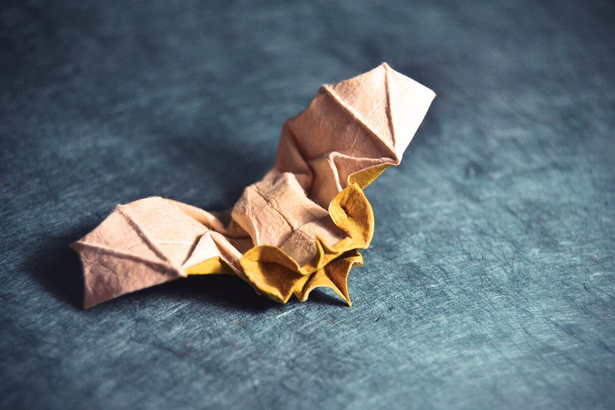 Origami Tent Bat