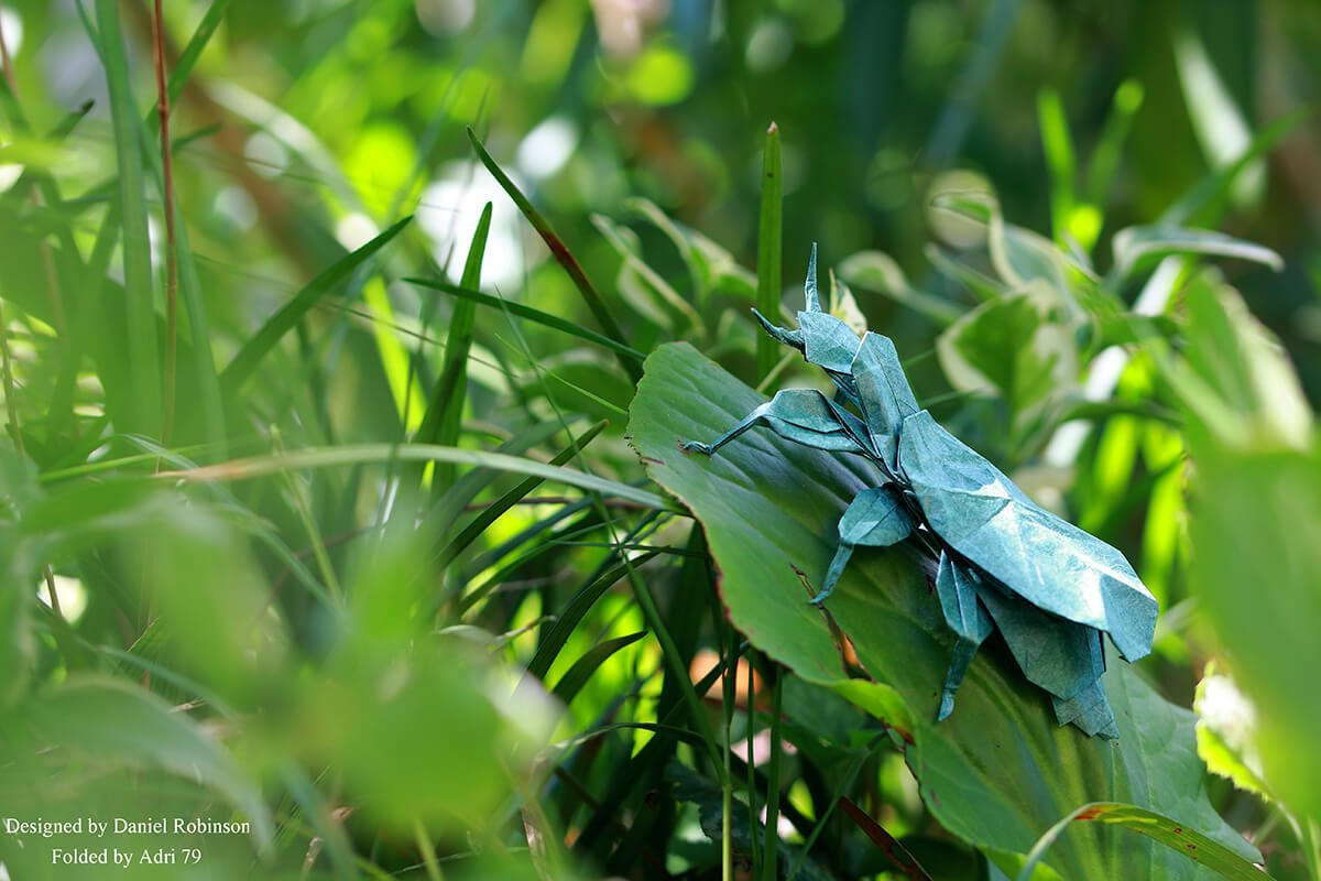 Origami Leaf Insect