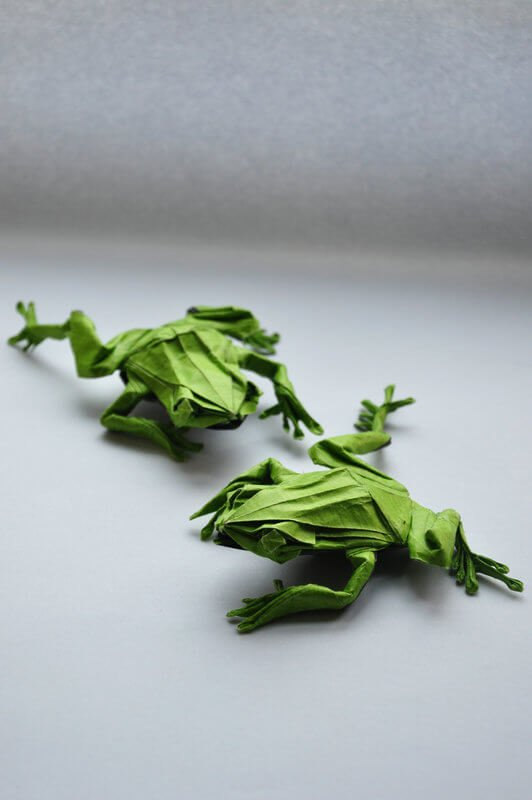 Origami Tree Frogs