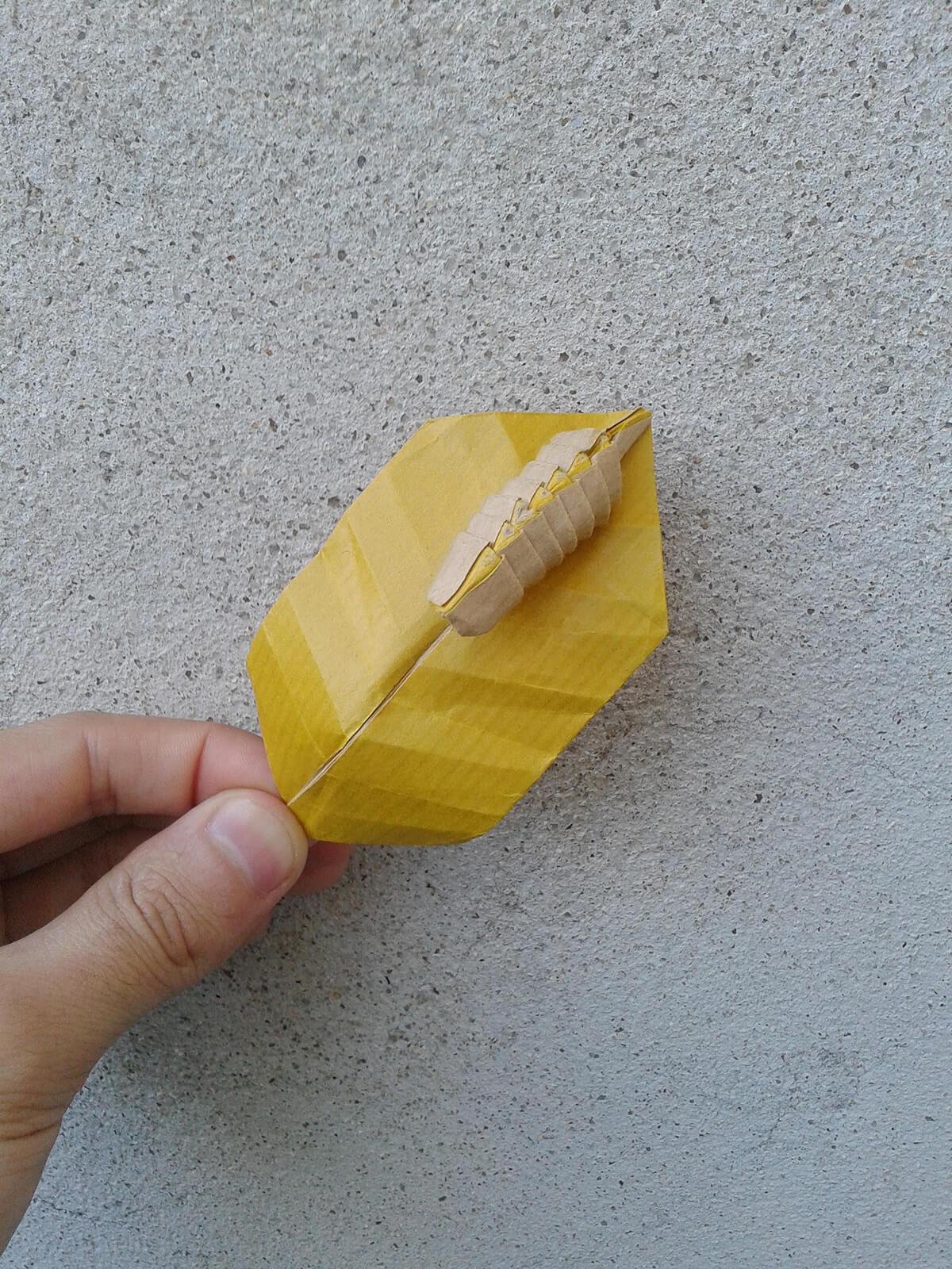 Origami Caterpillar on Leaf