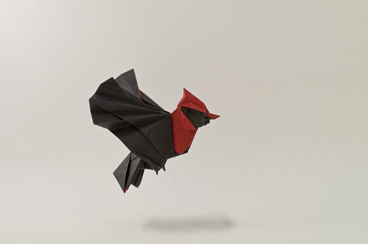 Origami Pechirrojo