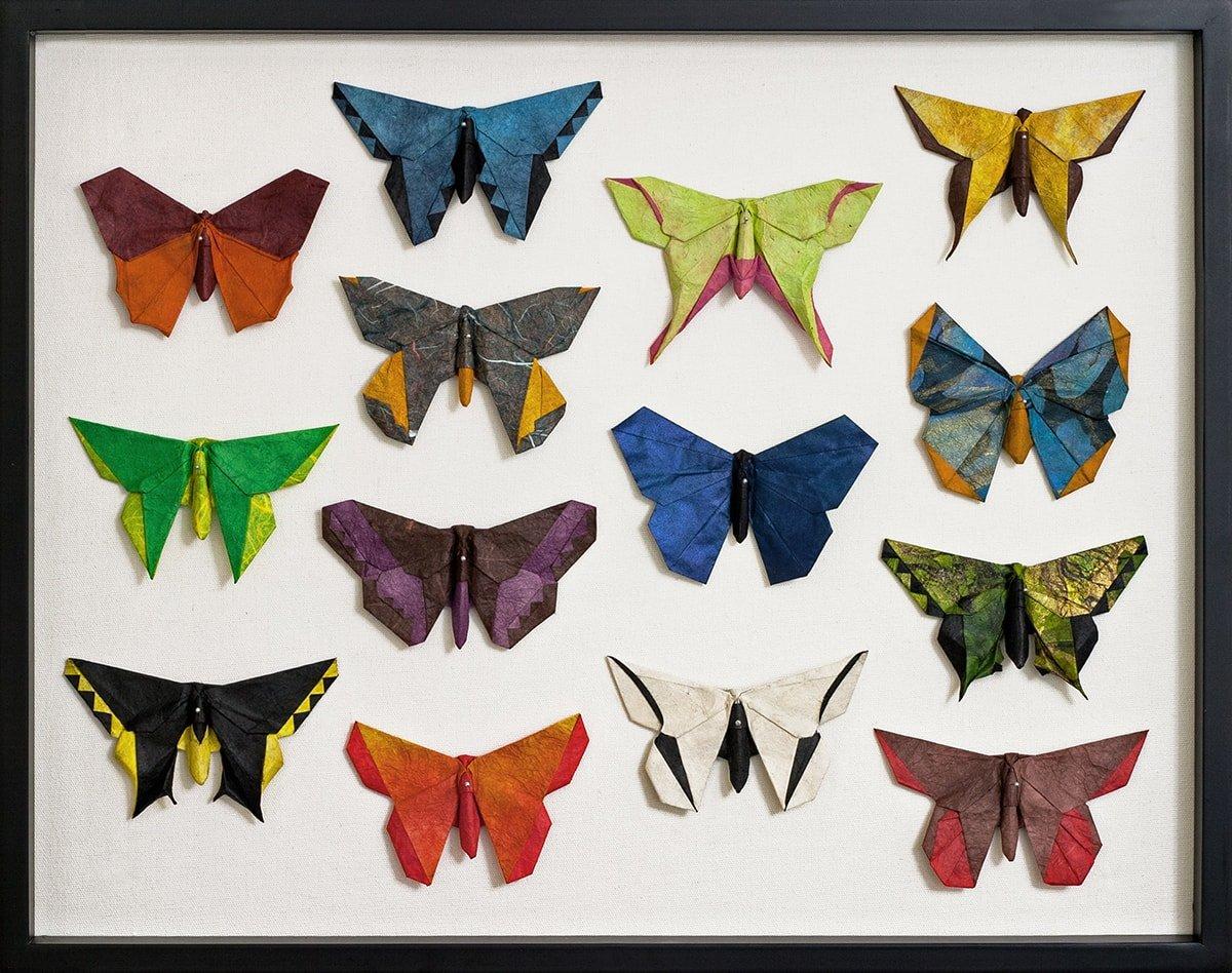 Butteflies