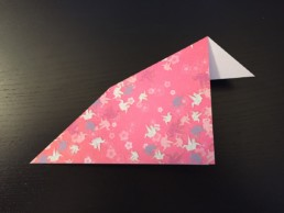 Inside Reverse Fold Step 6