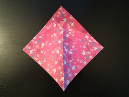 Outside Reverse Fold Step 4