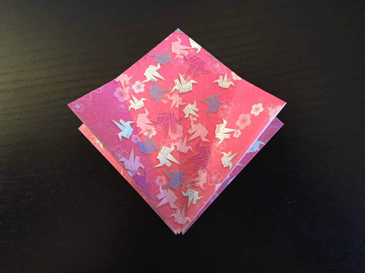 Petal Fold Step 2