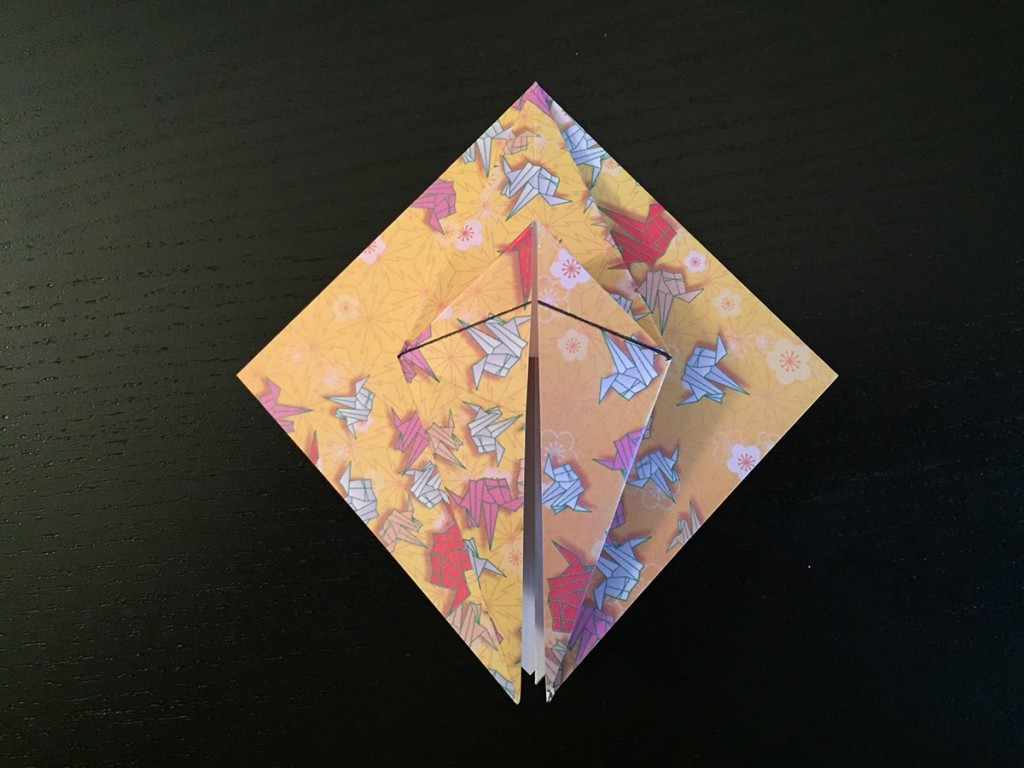 Petal Fold Variation Step 7
