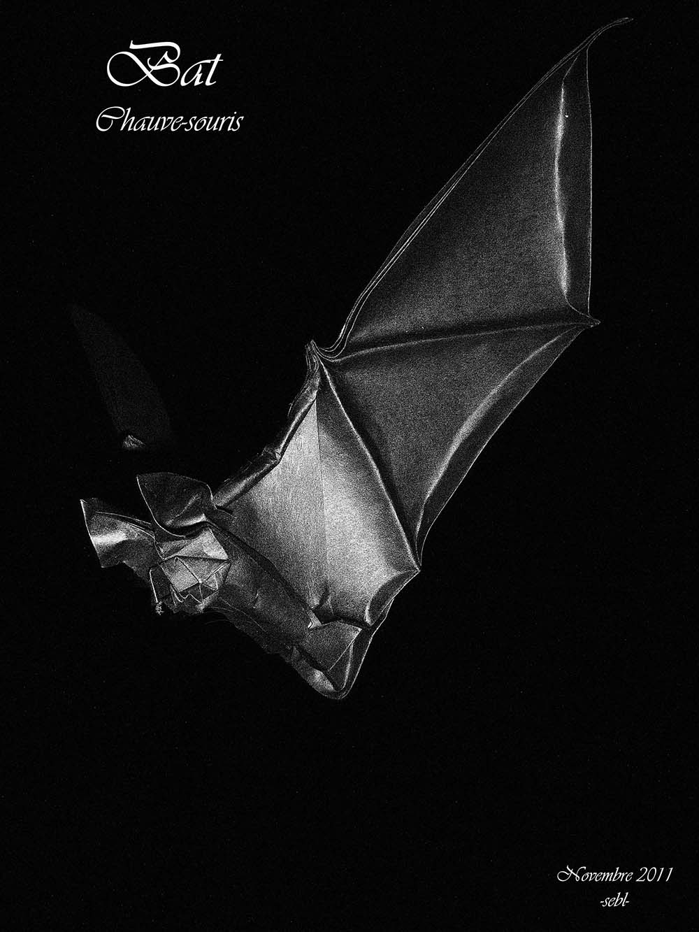 Bat Version 2