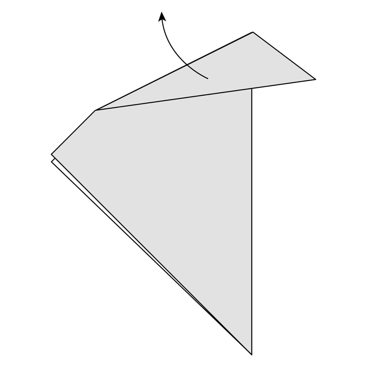 Outside Reverse Fold Step 3