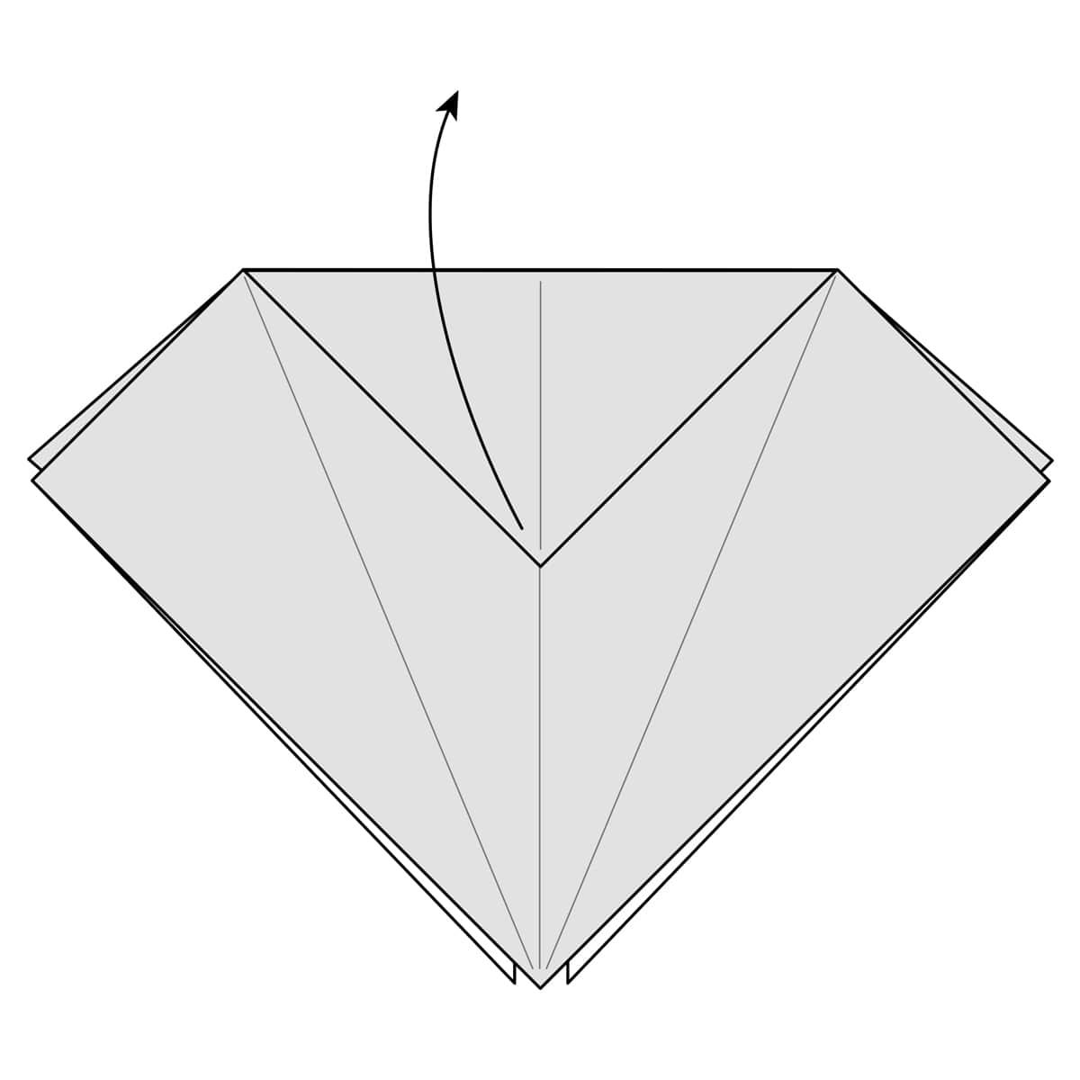 Petal Fold Step 6