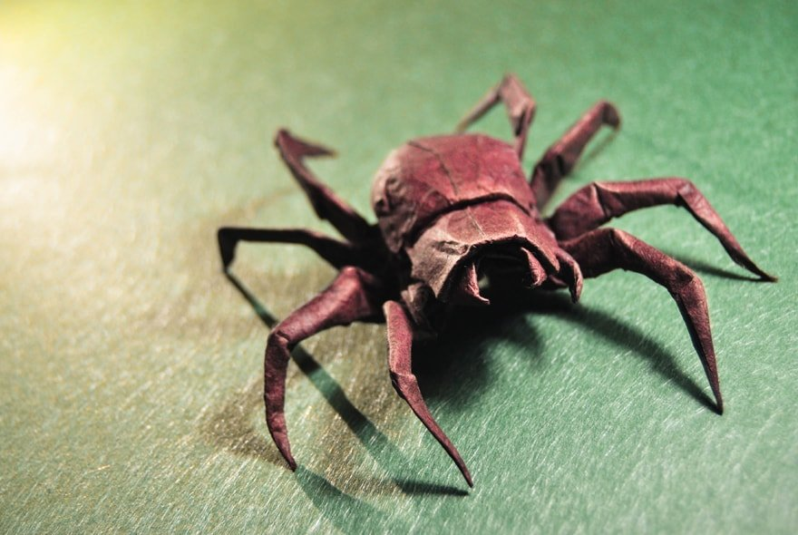 how to make an origami spider images origami
