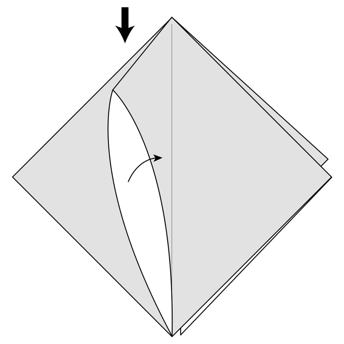 Squash Fold Step 2