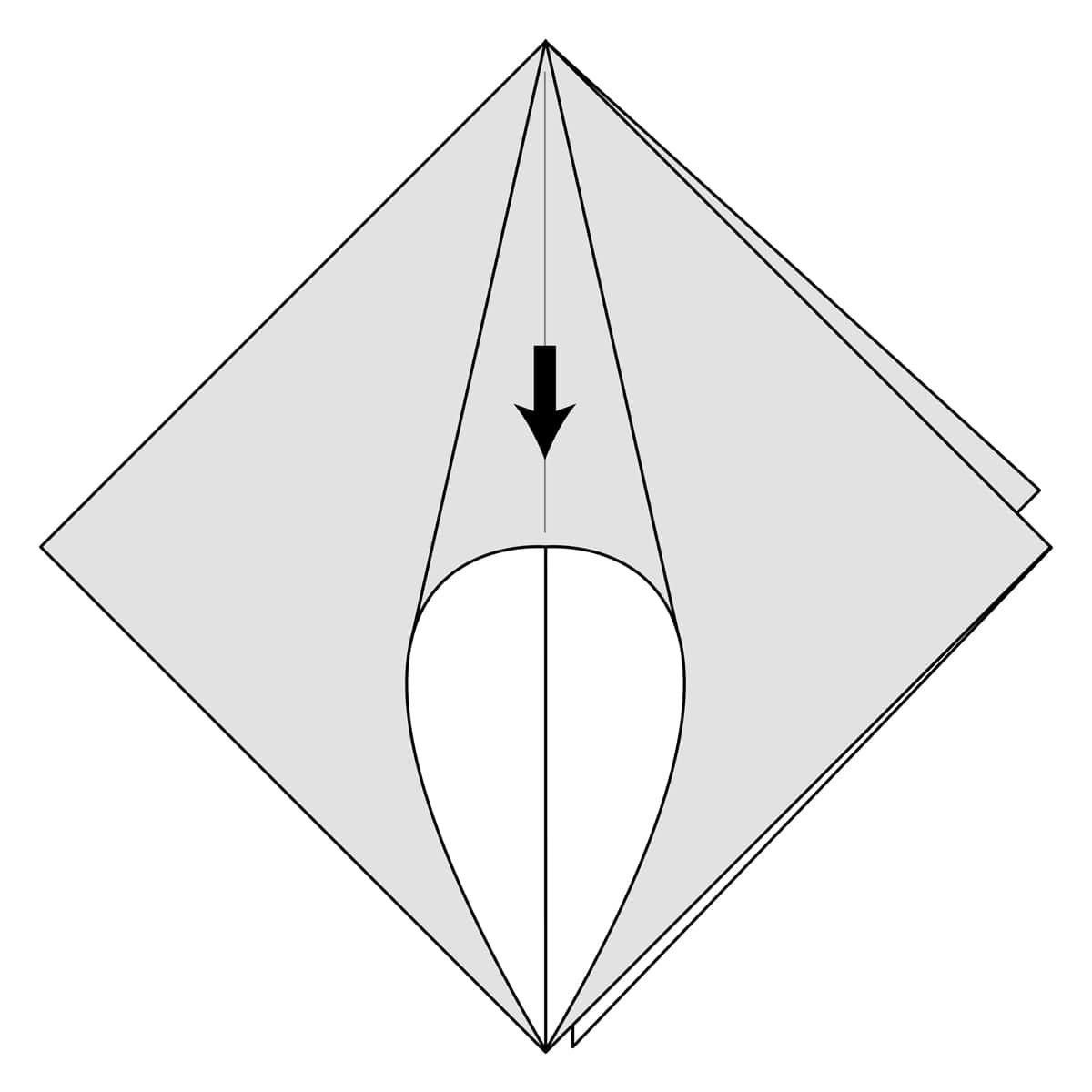 Squash Fold Step 3