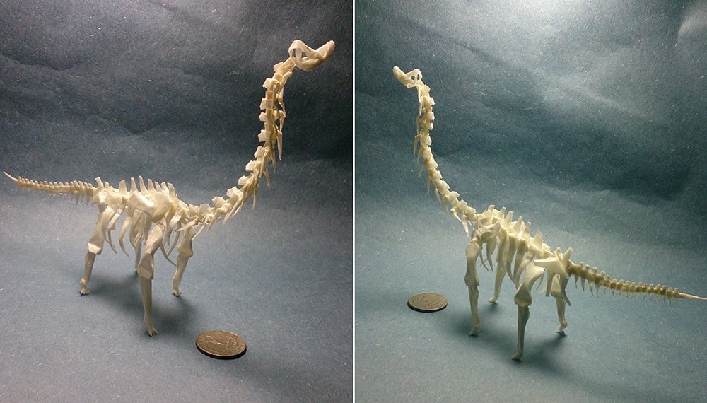 Tiny Brachiosaurus Skeleton