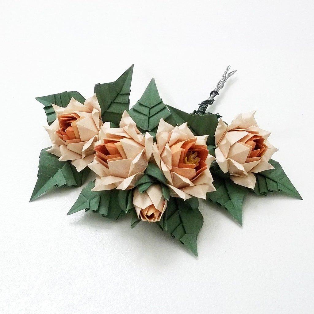 Lotus Roses