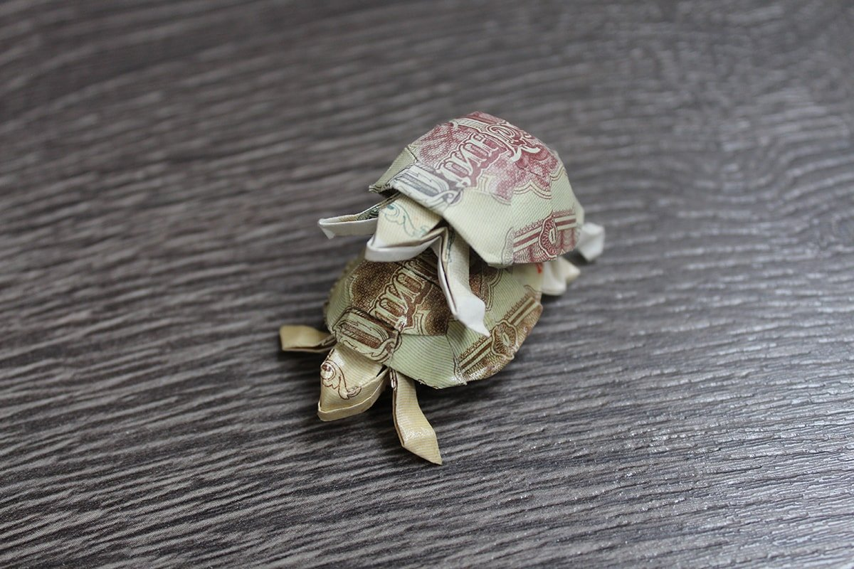 How to make an origami Dollar Bill Turtle Easy TUTORIAL - YouTube ... | 800x1200