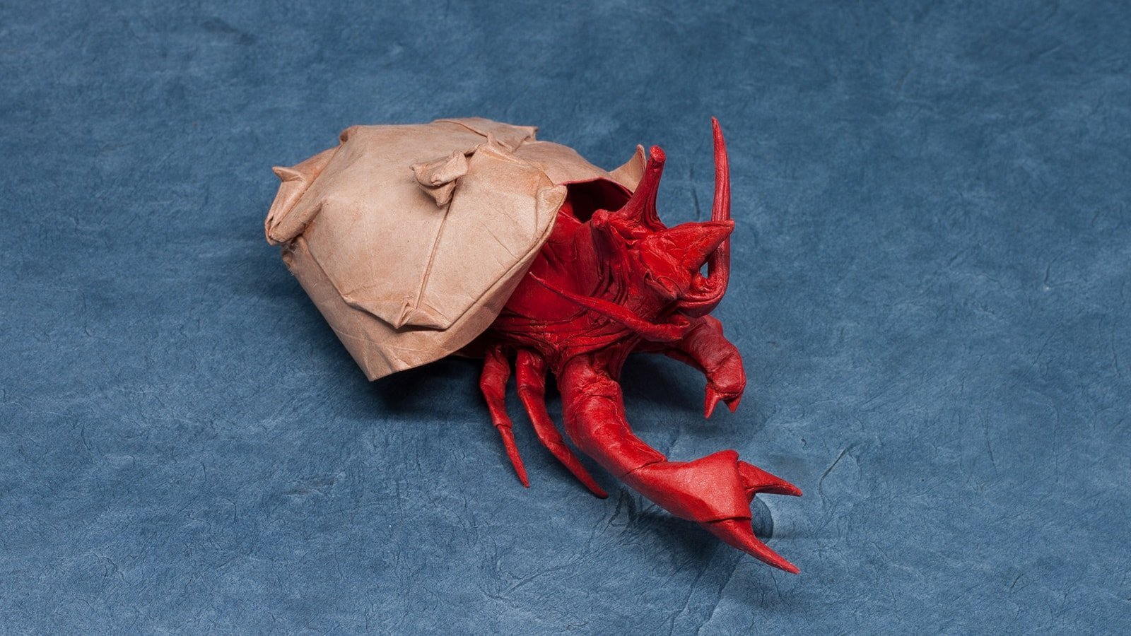 How to make a paper crab | Origami crab - YouTube | 900x1600