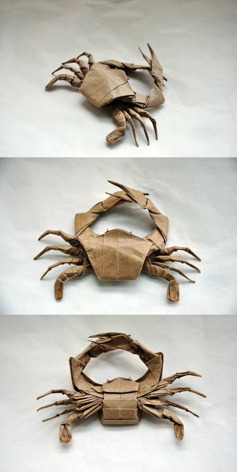 Jason Ku's Crab