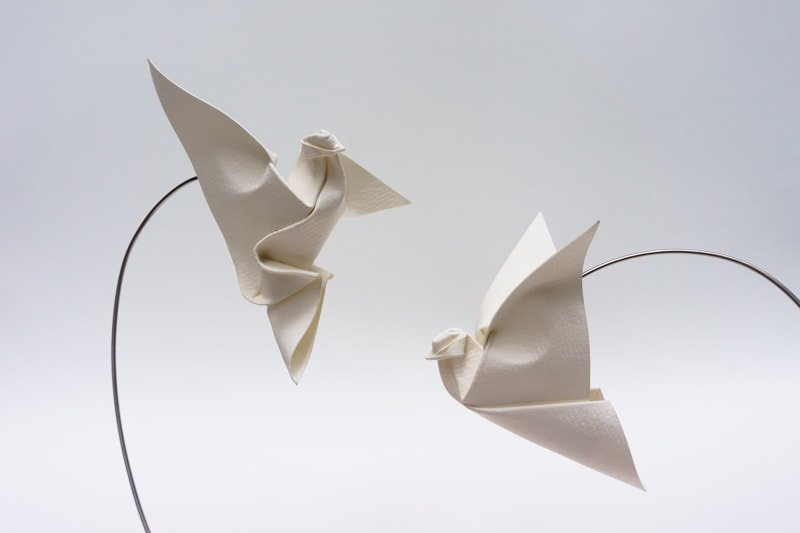 Vietnamese Doves