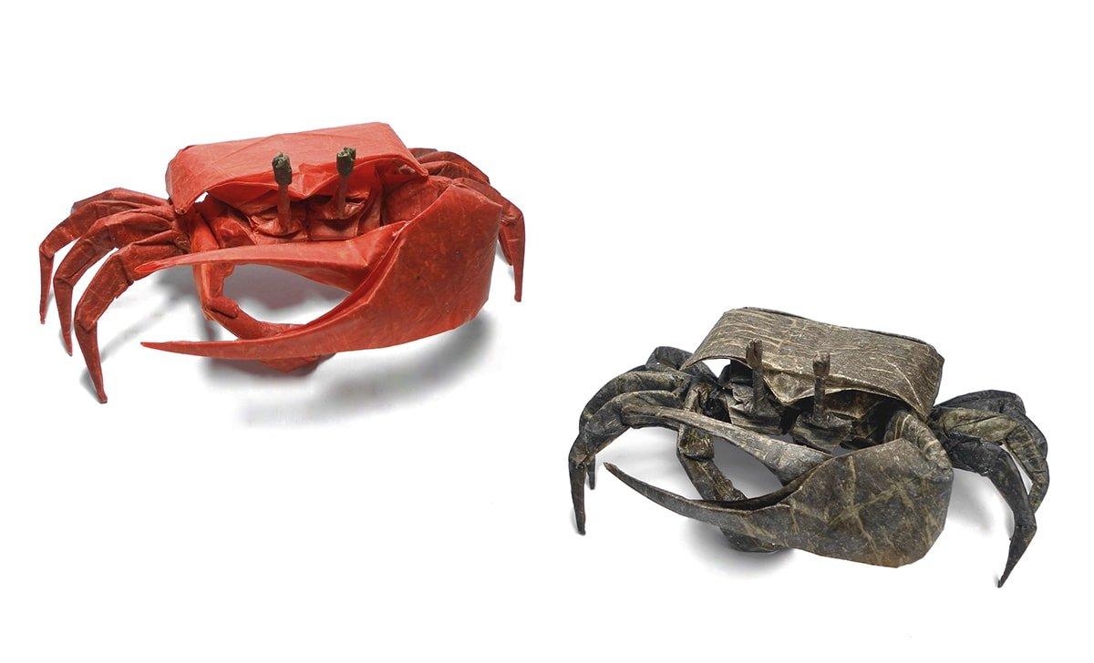 2 Fiddler Crabs