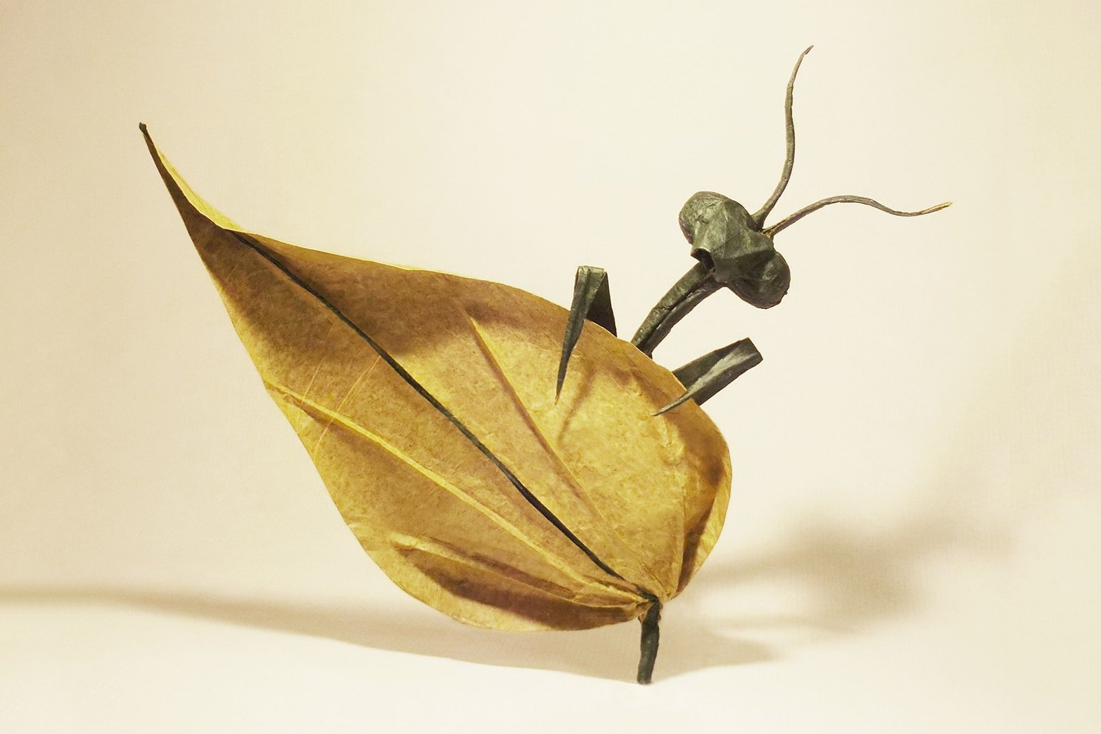 24 Incredibly Realistic Looking Origami Insects