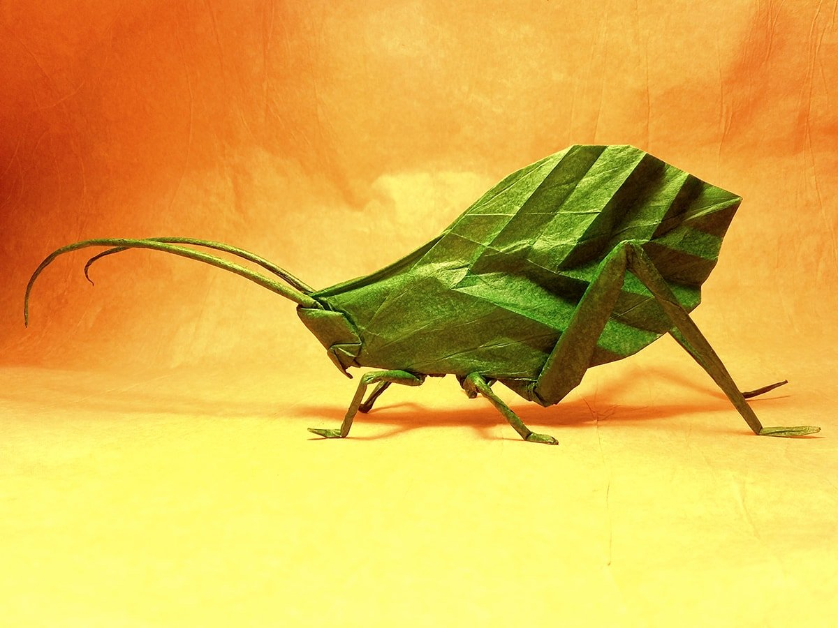 24 More Amazingly Realistic Looking Origami Insects - photo#44