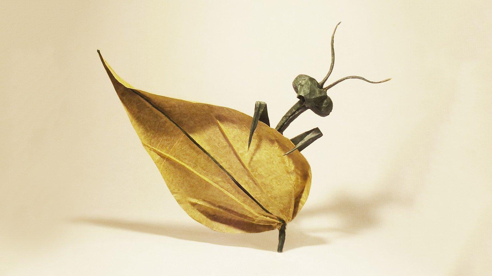 Origami Maniacs: Origami Swallowtail Butterfly by Evi Binzinger | 900x1600