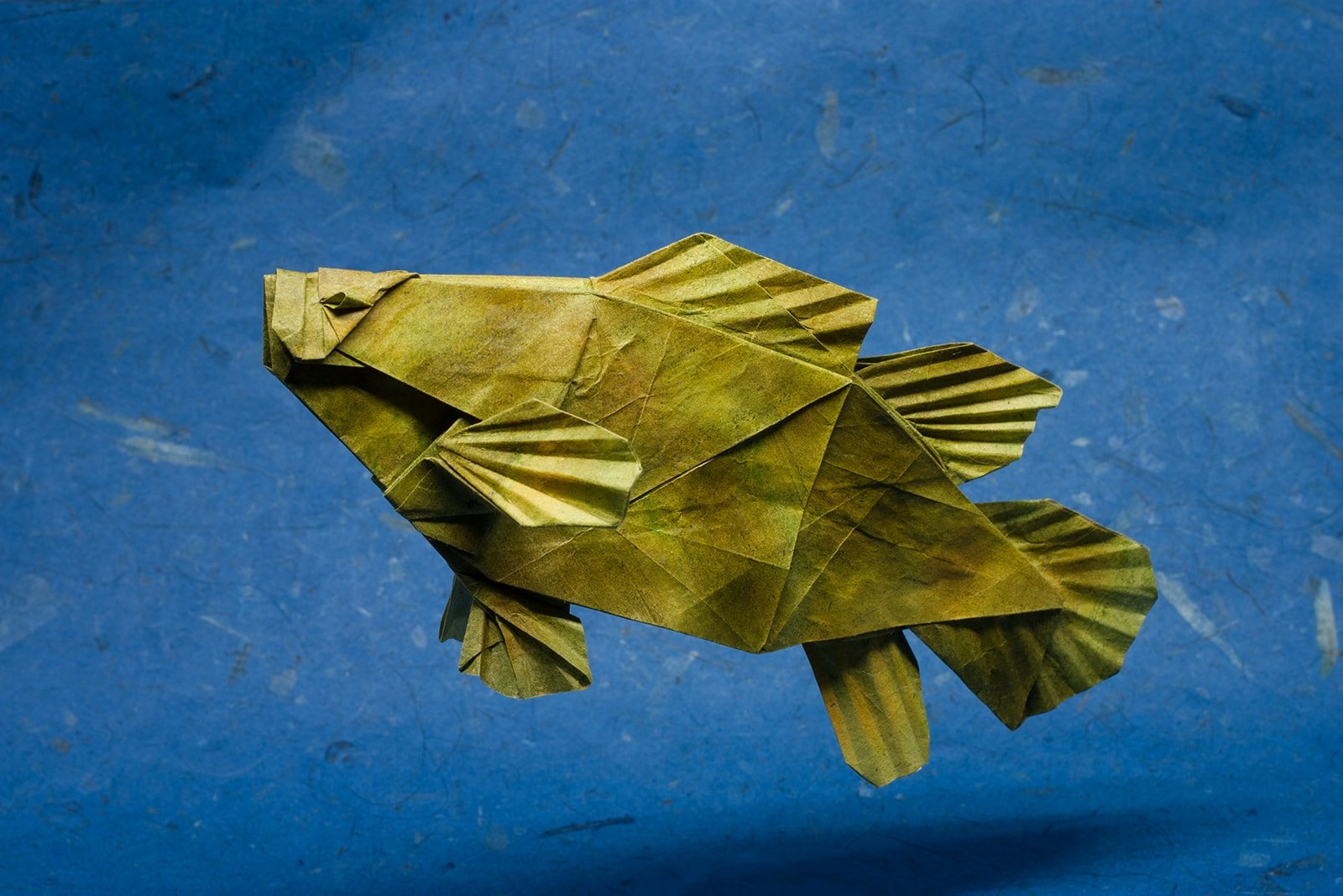 25 Excellent Origami Fish Just for the Halibut - photo#8