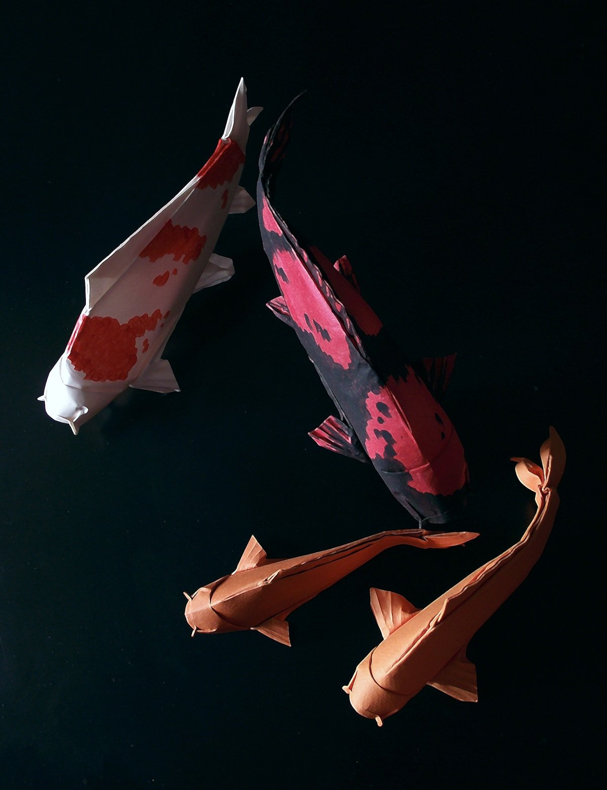 4 Paper Koi by Edgar Williams