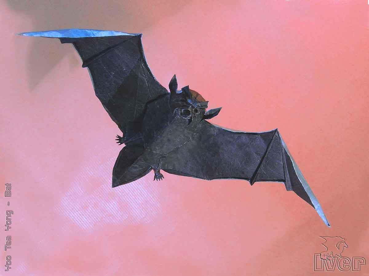 Bat by Yoo Tae Yong