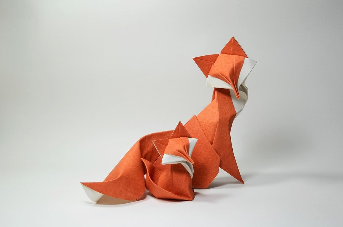 Foxes by Hoang Tien Quyet