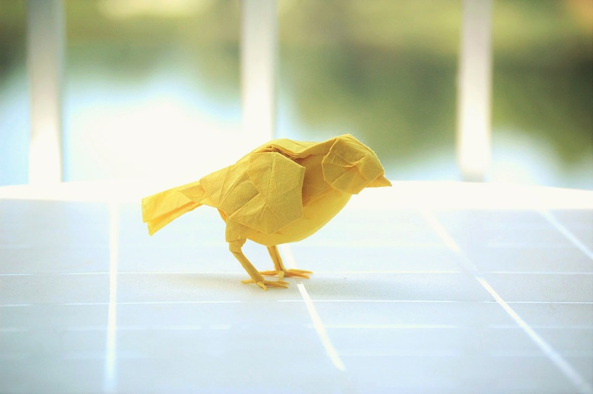 Origami small bird easy - bird tutorial - YouTube | 798x1200