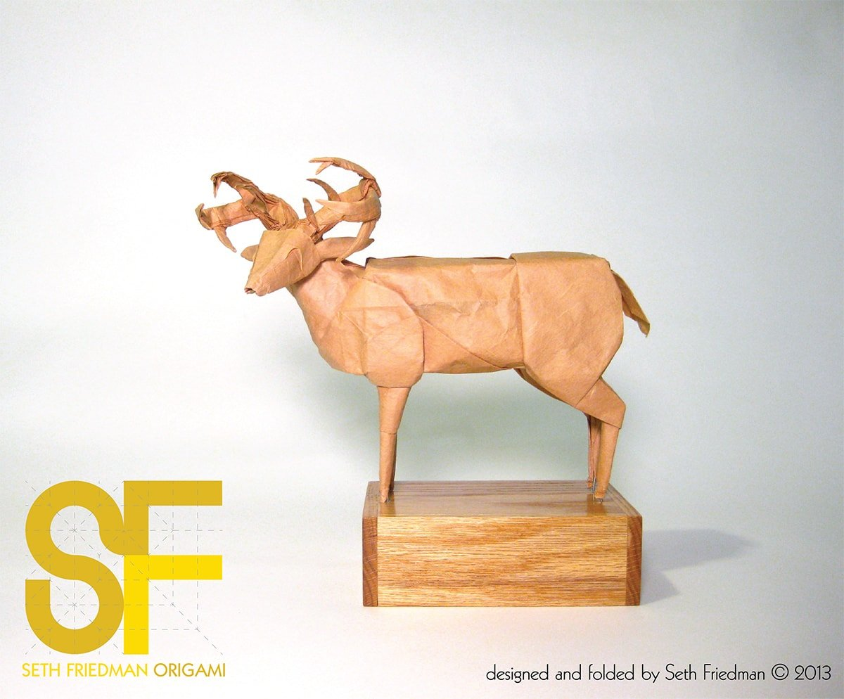 Mule Deer by Seth Friedman