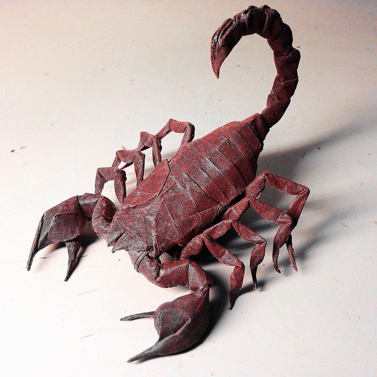 Scorpion by Kota Imai (Scorpio)
