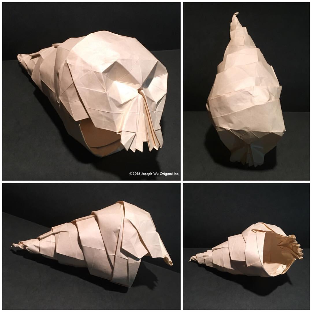 Snail Skull 2 by Joseph Wu