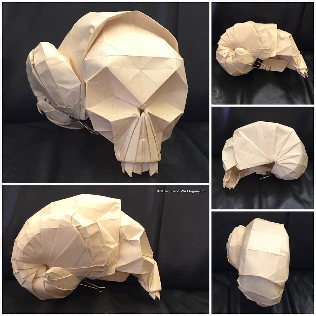Snail Skull 3 by Joseph Wu