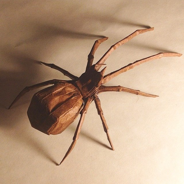 Brown Widow by Robert J. Lang