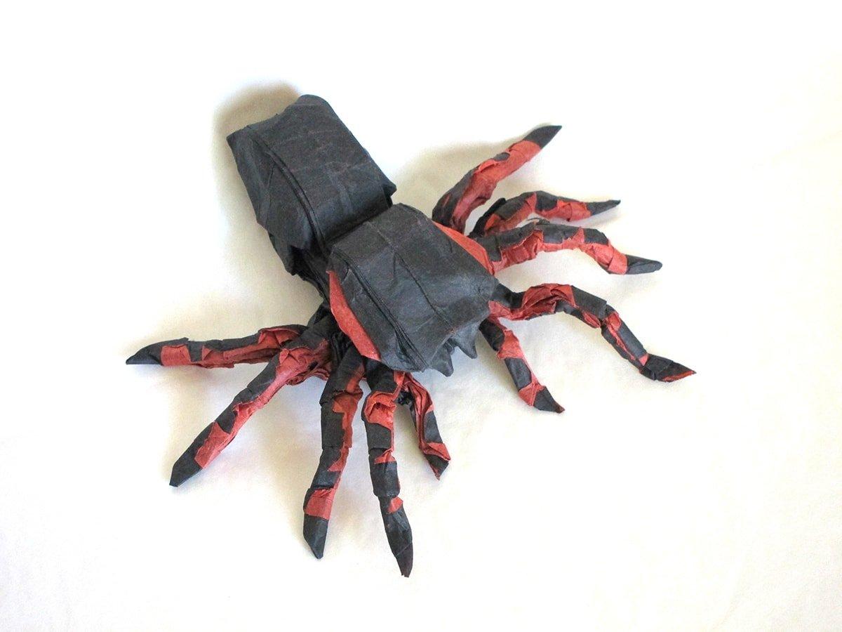Tarantula by Winston