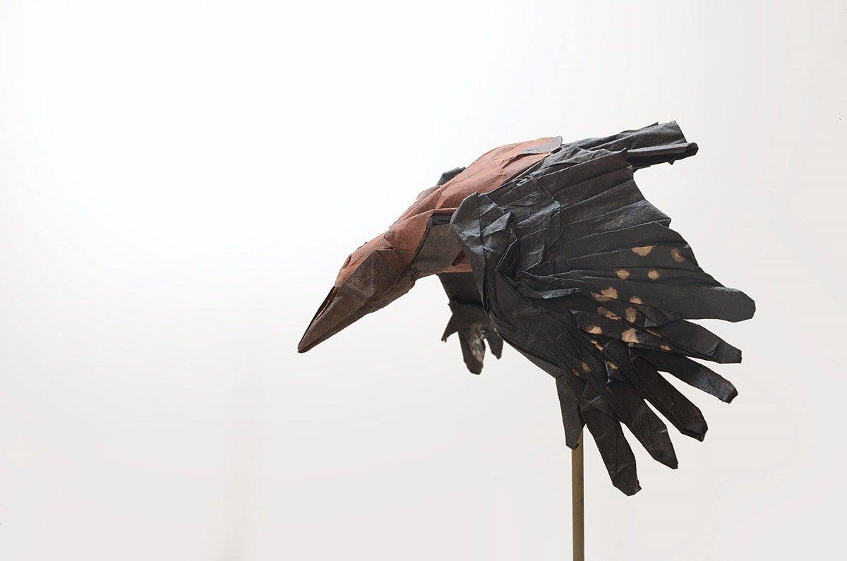Okinawa Woodpecker by Kei Watanabe