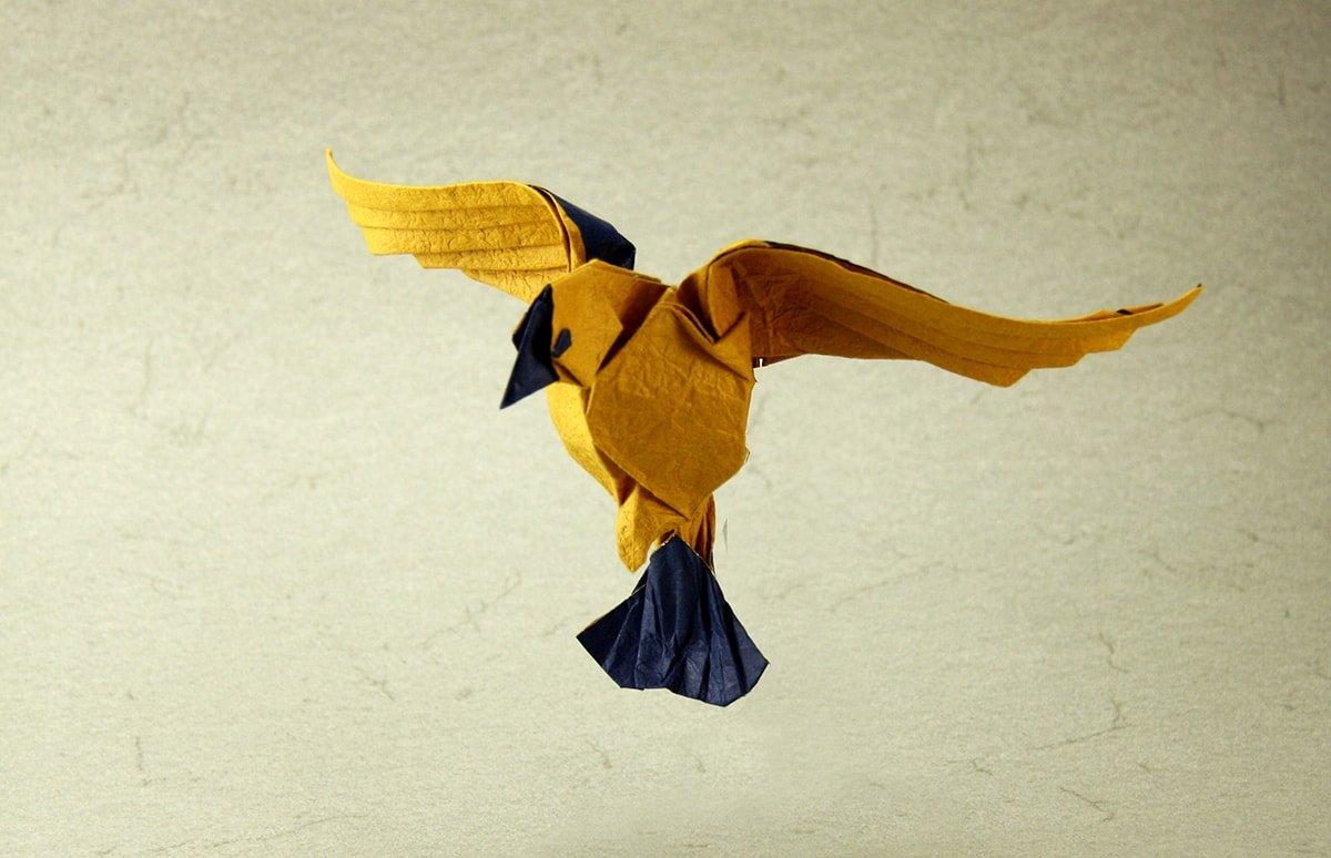 Yellow Flying Bird by Terry Nicolas