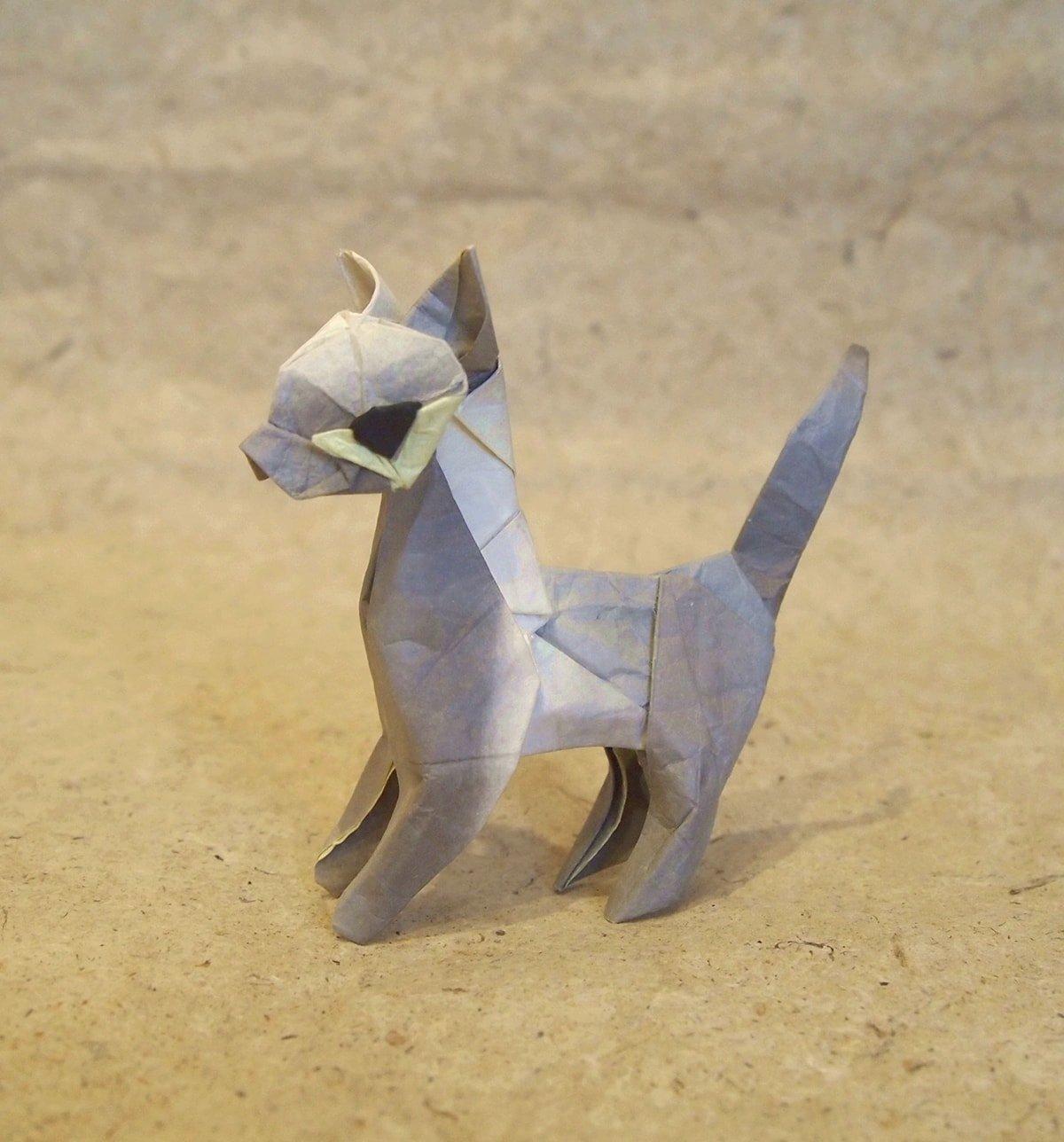 Hiroaki Kobayashi's Cat