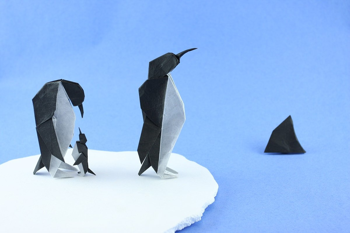 Emperor Penguins by Quentin Trollip