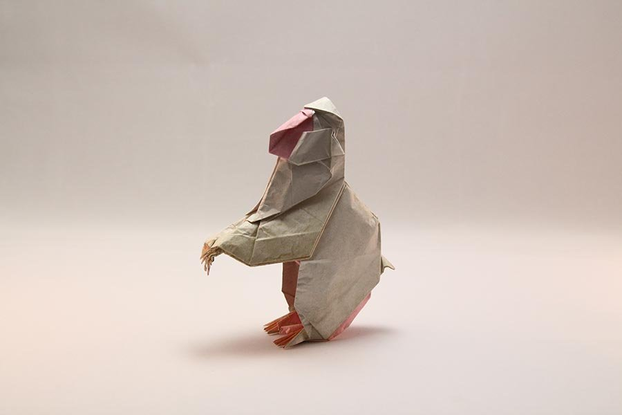 Japanese Macaque by Fumiaki Kawahata