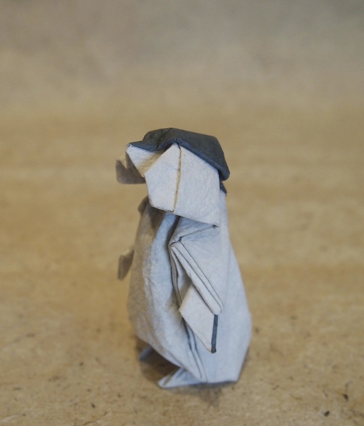 Penguin Chick by Satoshi Kamiya