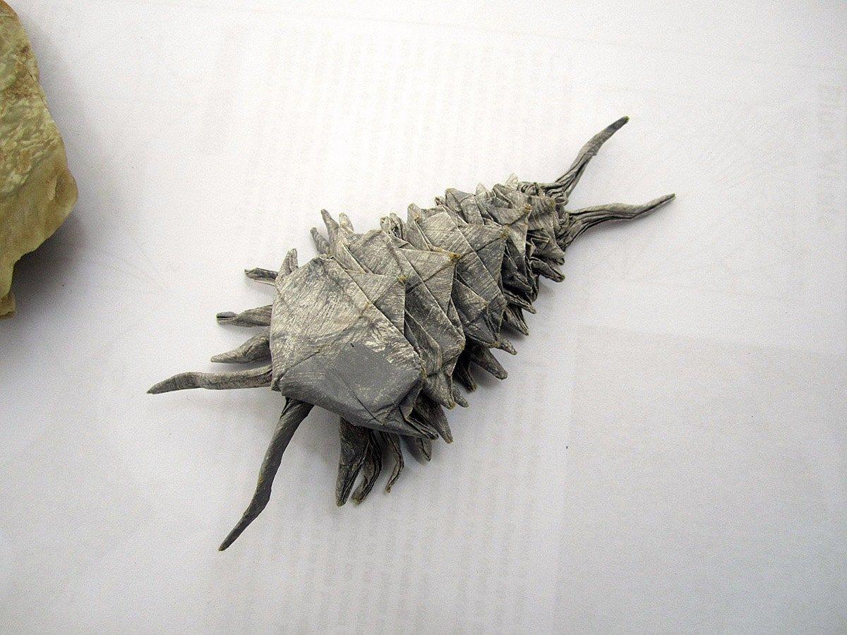 Origami Trilobite