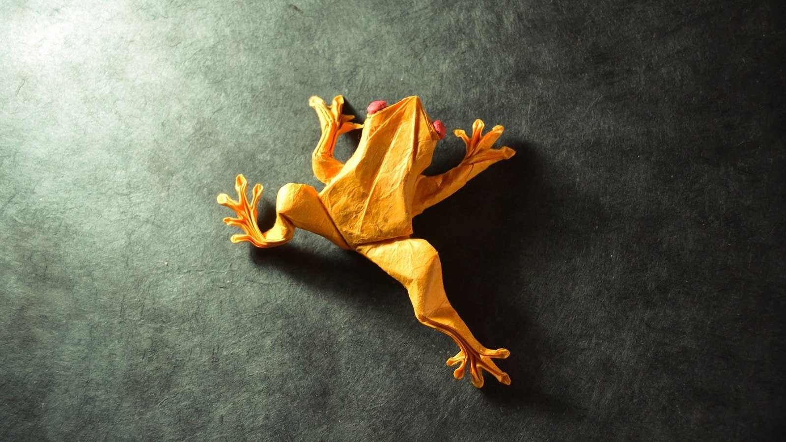 Origami Frog Step-By-Step Instructions Teaching Resource | Teach ... | 900x1600
