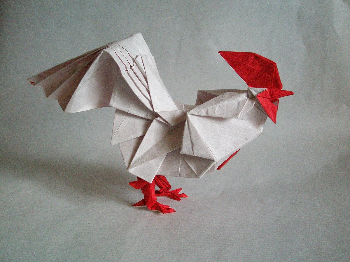 Kyohei Katsuta Rooster