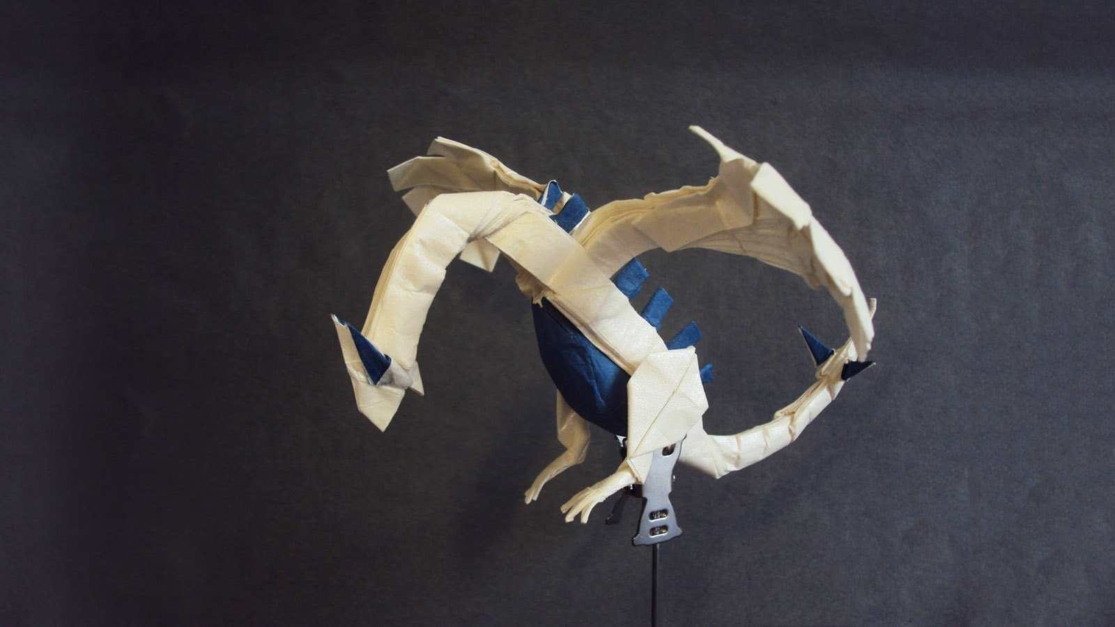 Magnificent Origami Sharks To Celebrate Shark Awareness Day Diagram Lugia