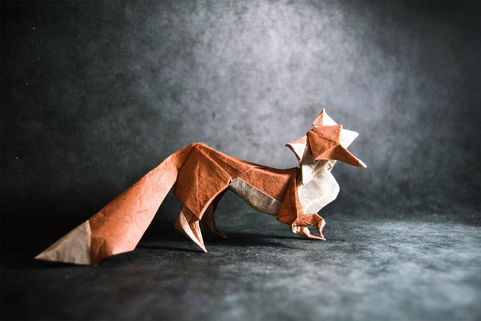 I Give These Awesome Origami Animals My Seal Of Approval Advanced Fox Instructions Diagram