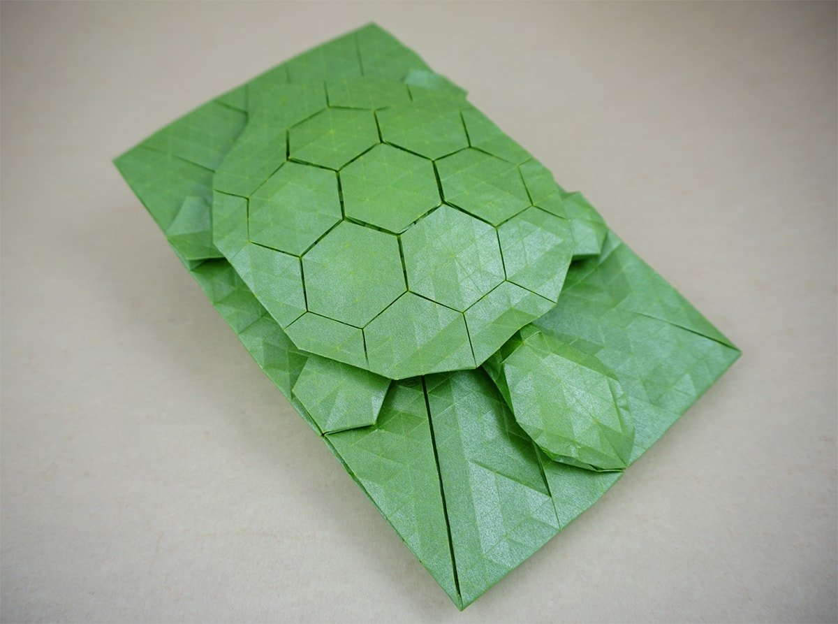 Turtle Tessellation
