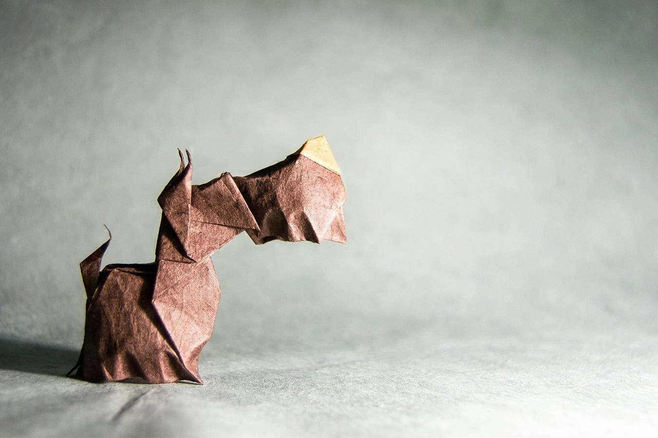 Origami Dogs